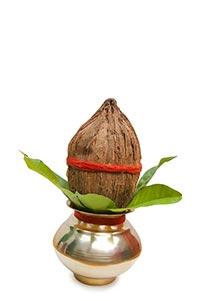 Celebrations ; Ceremony ; Close-Up ; Coconut ; Col